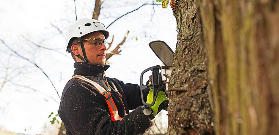 The right tree pruning methods